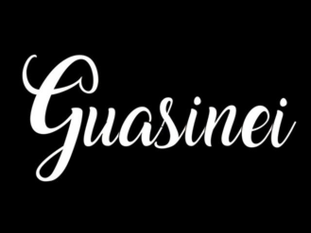 PROYECTO GUASINEI